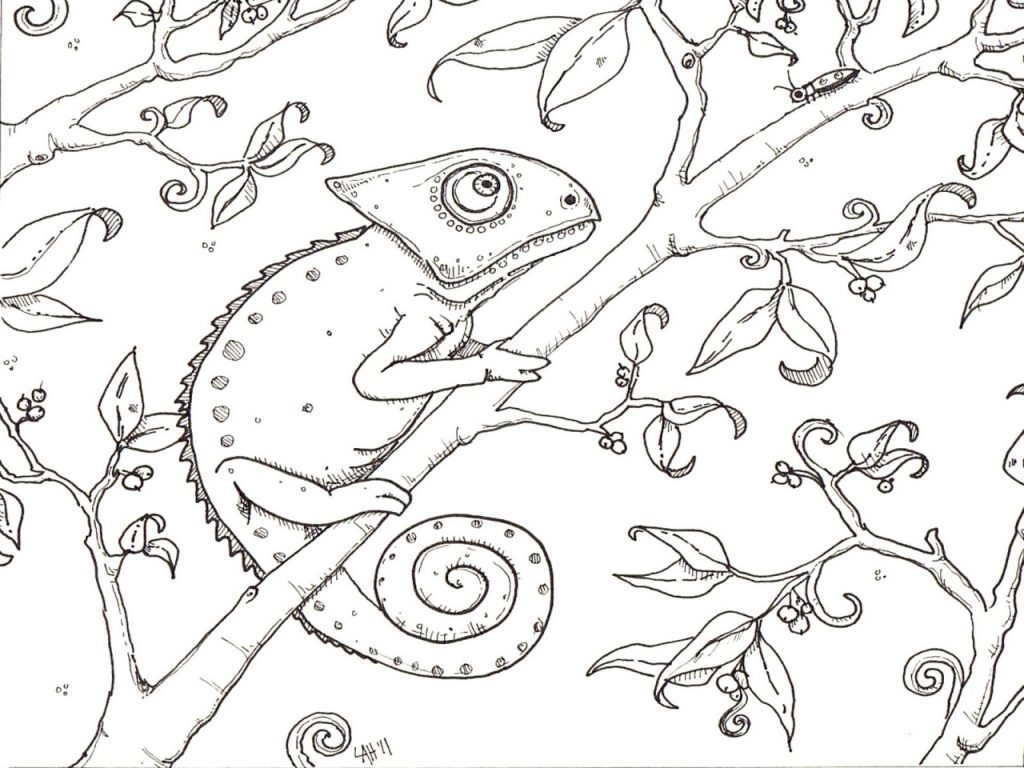 25 Chameleon Coloring Page Compilation | FREE COLORING PAGES - Part 3