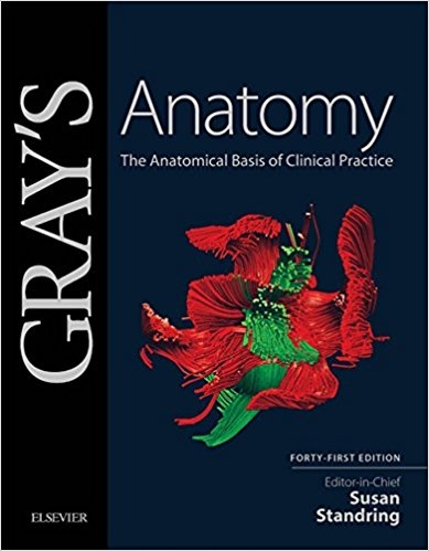charlotte's web coloring pages - Gray s Anatomy E Book The Anatomical Basis of Clinical Practice 41st Edition Kindle Edition