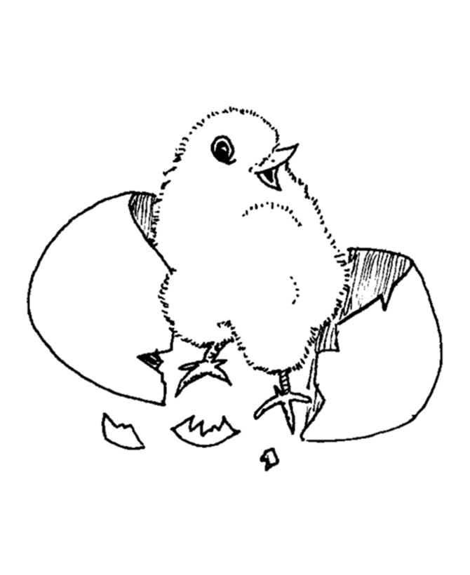 chicken coloring pages - cute animal coloring pages for girls
