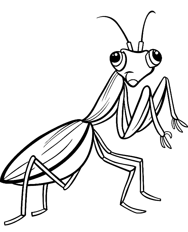 christian adult coloring pages - insect coloring pages 15
