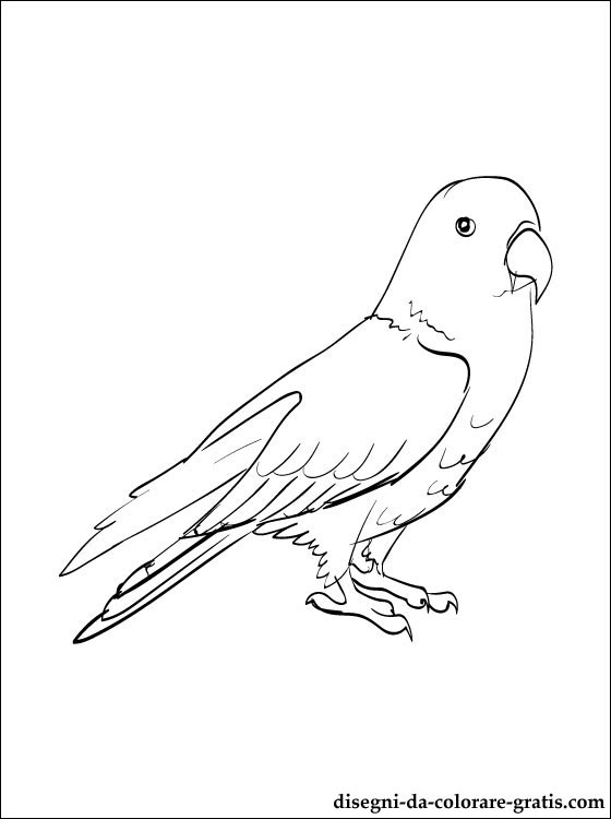 chuggington coloring pages - eclectus line drawing