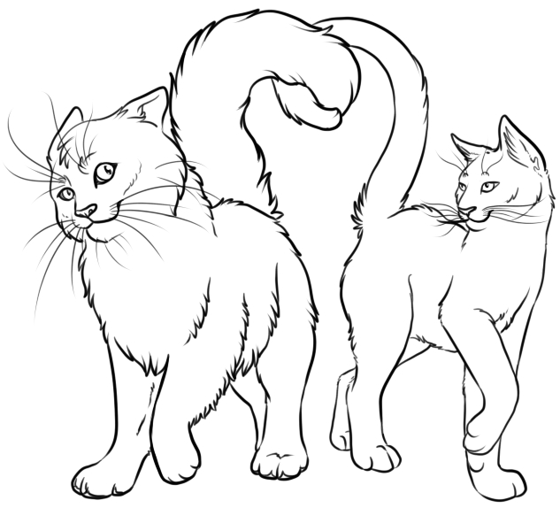 cloud coloring page - Graystripe and Silverstream