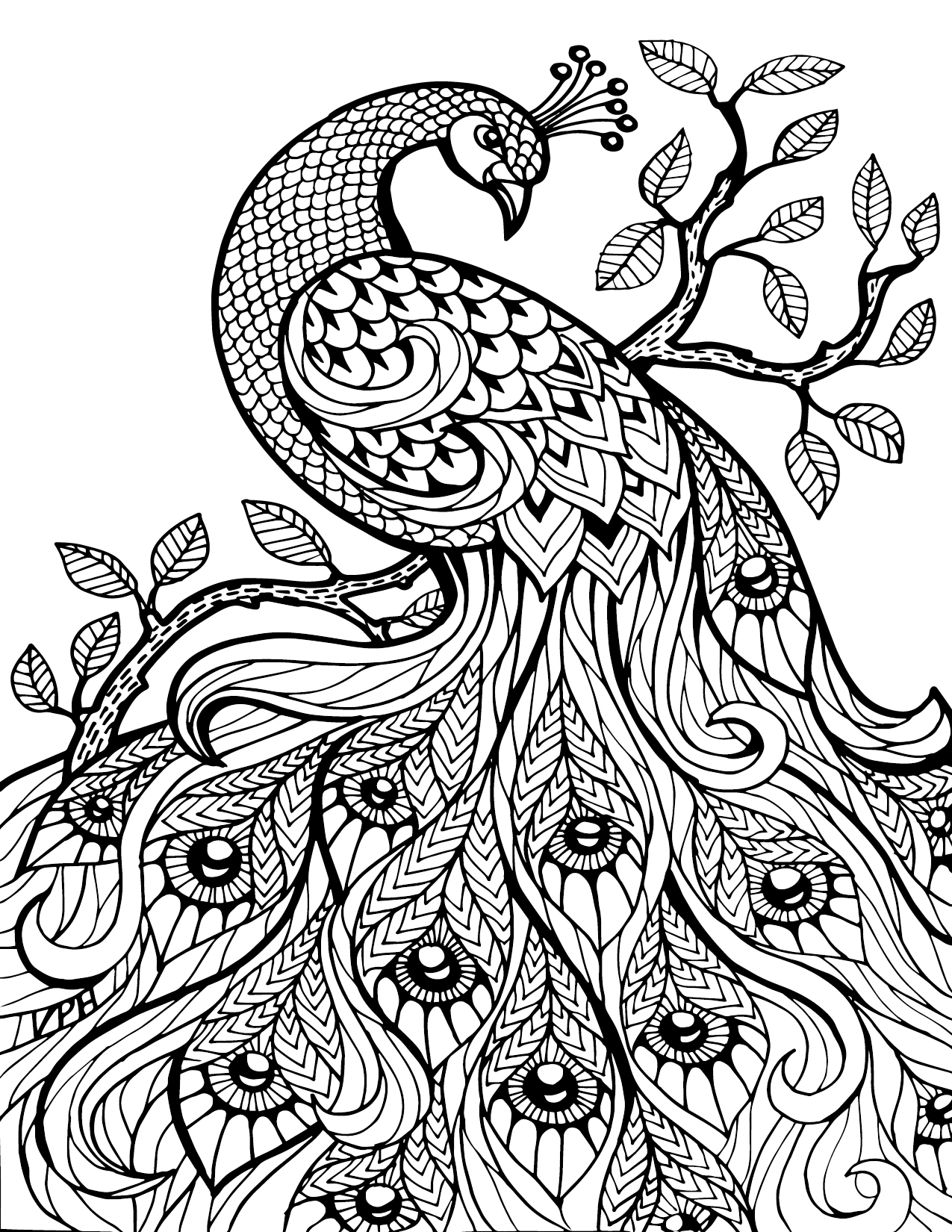 coloring pages for adults to print - animal coloring pages for adults