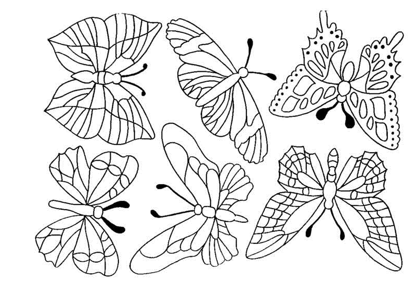 coloring pages of flowers and butterflies - pictures butterflies