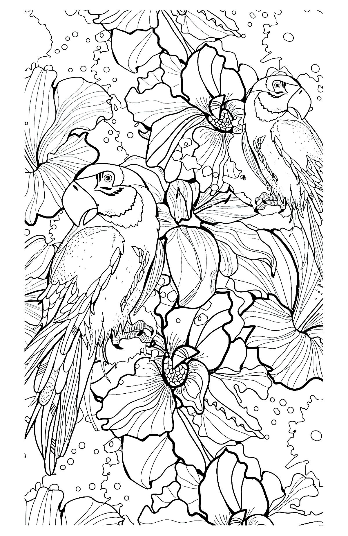 complex coloring pages - plex coloring pages of animals