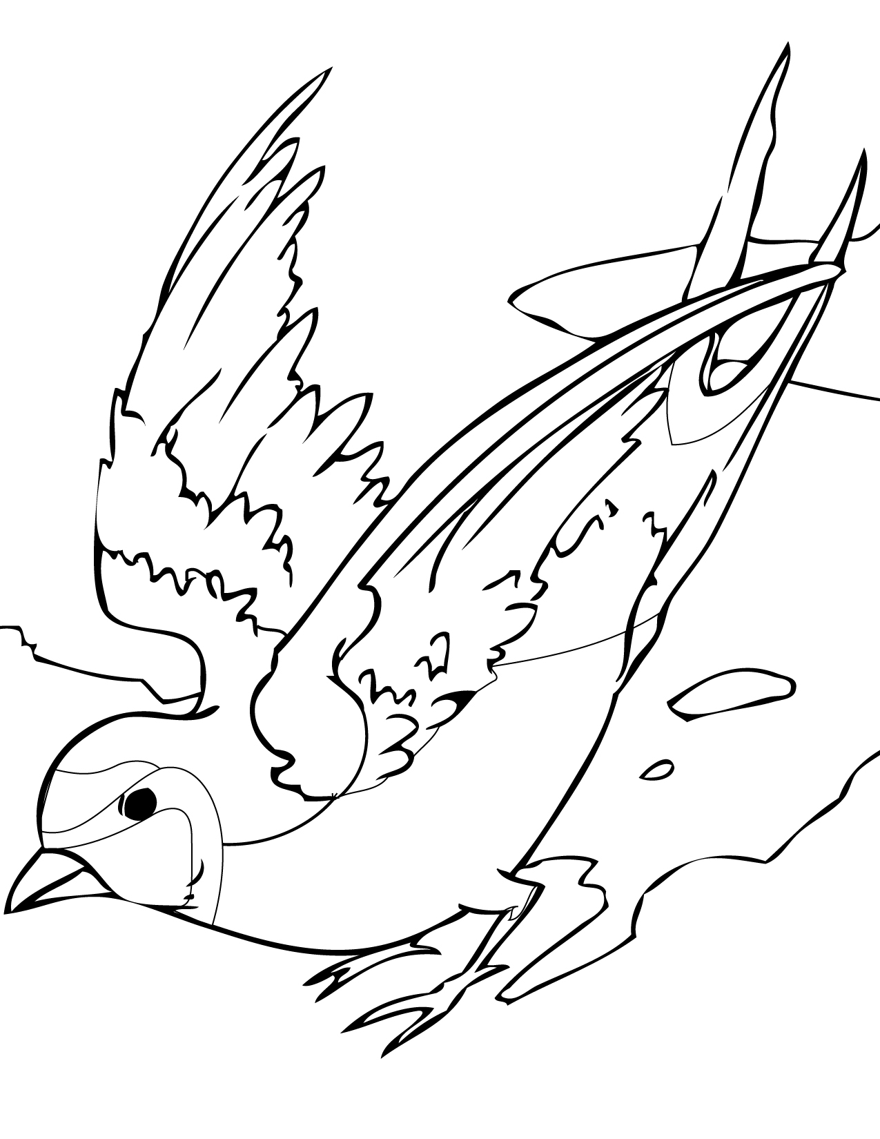 cool coloring pages - swallows
