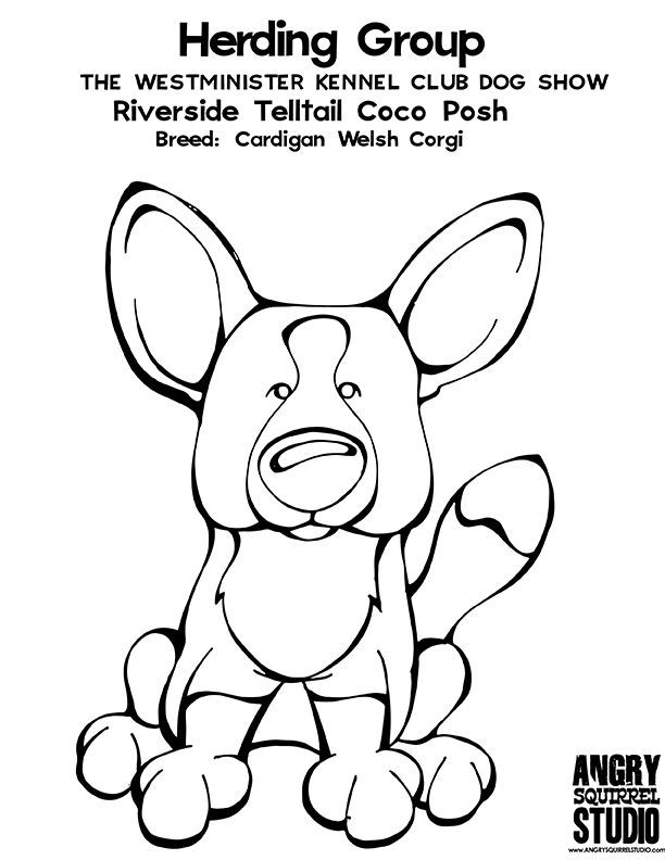 corgi coloring pages - corgi coloring pages