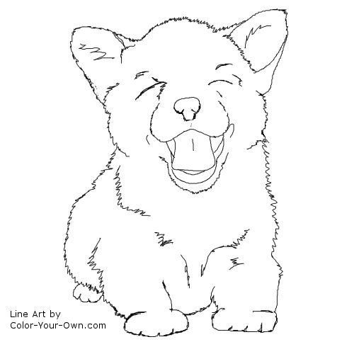 corgi coloring pages - dog corgi puppy