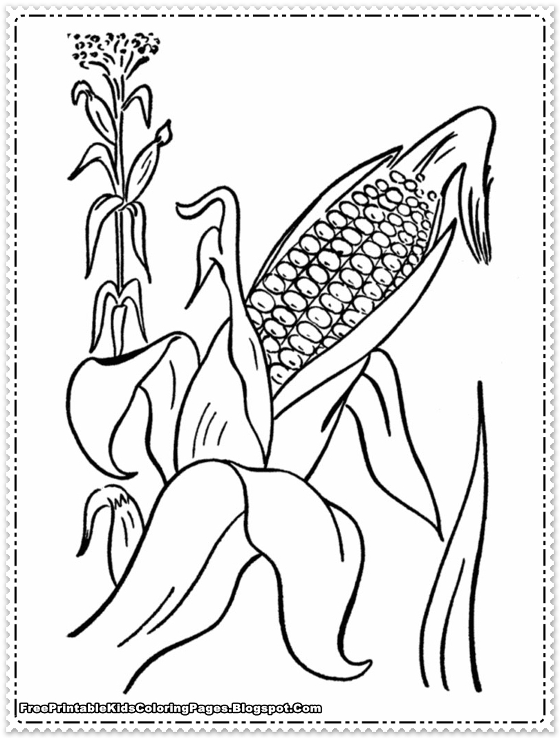 23 Corn Coloring Page Pictures Free Coloring Pages Part 2