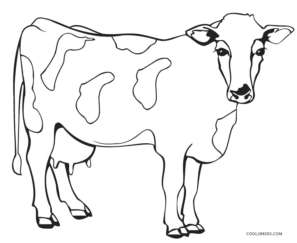 Cow Coloring Pages - Free Printable Cow Coloring Pages for Kids