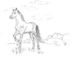 cowboy coloring pages - coloring pages ar 326