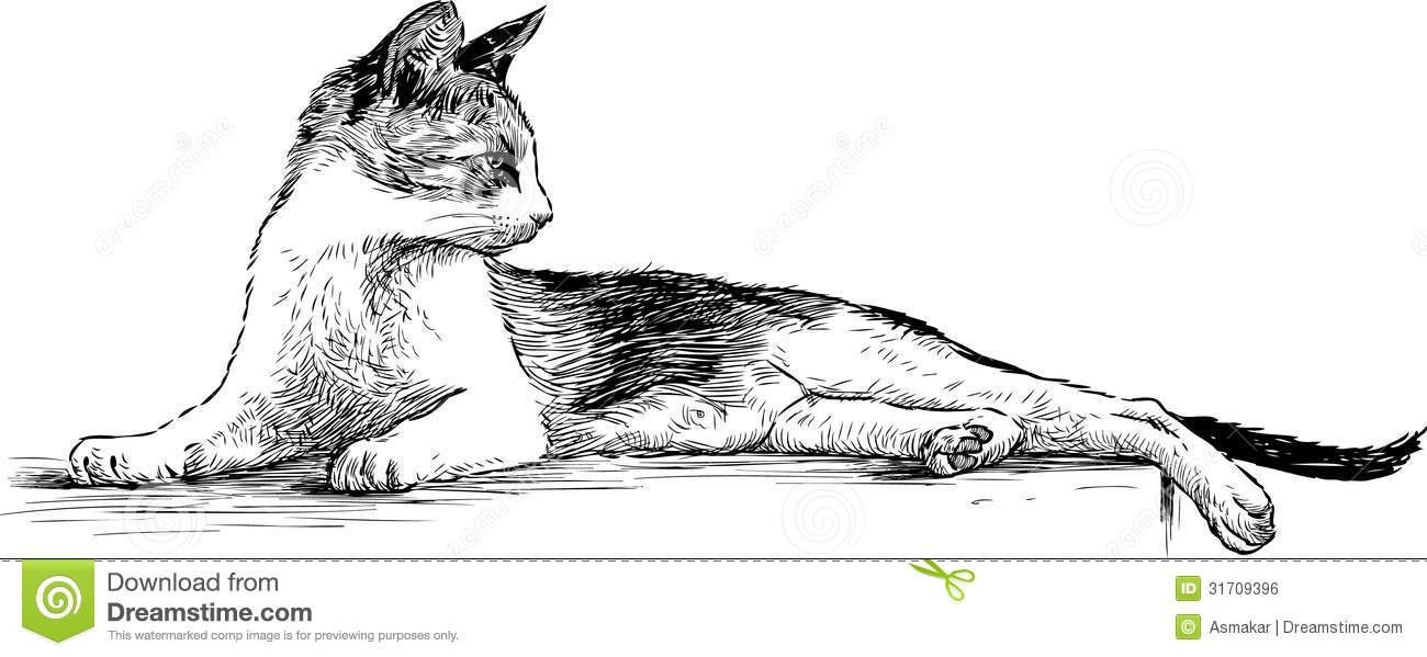 creepy coloring pages - royalty free stock image graceful cat vector drawing lying domestic image