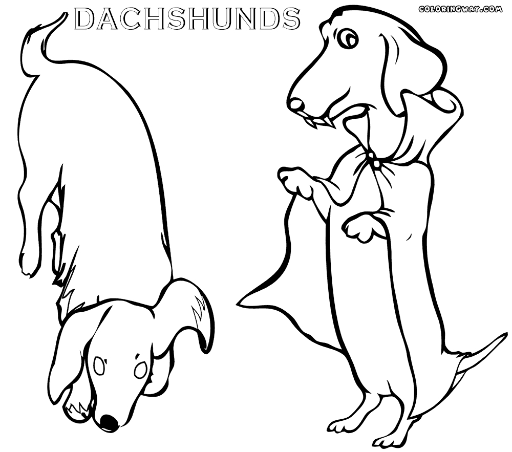 dachshund coloring pages - dachshund coloring pages
