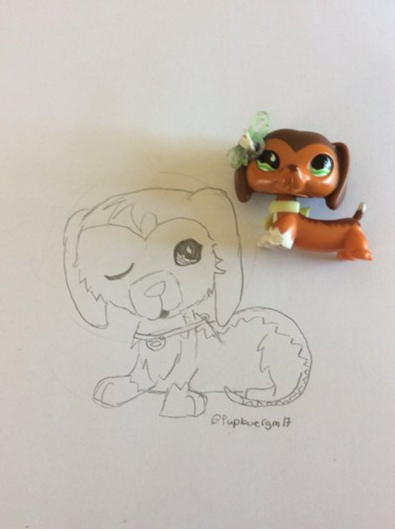 dachshund coloring pages - Lps 675 drawing