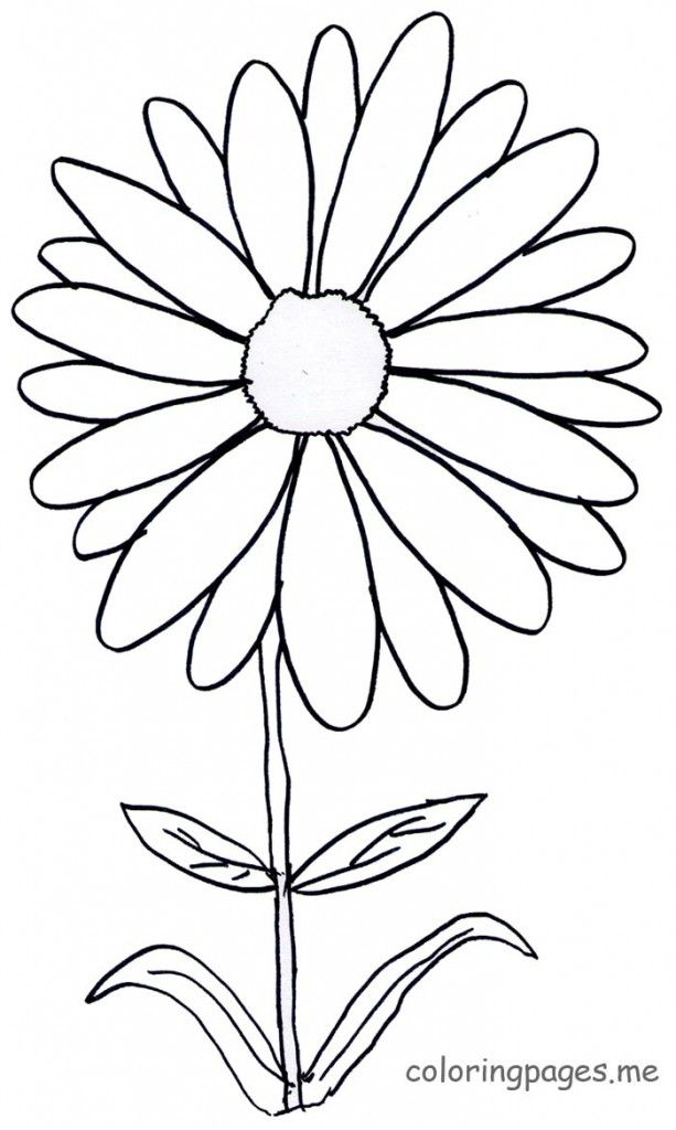 daisy coloring pages - bouquet of daisies coloring pages sketch templates
