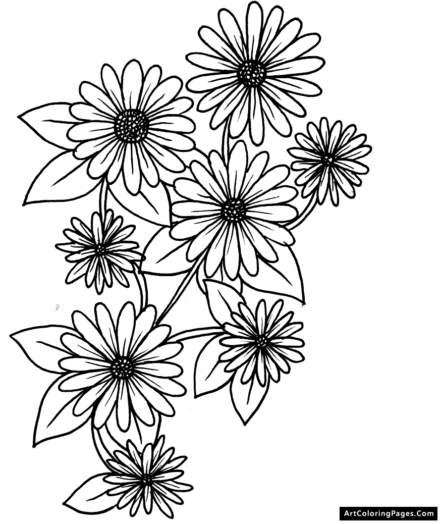 24 daisy girl scout coloring pages pictures free coloring pages daisy girl scout coloring pages coloring pages of daisy flower izmirmasajfo