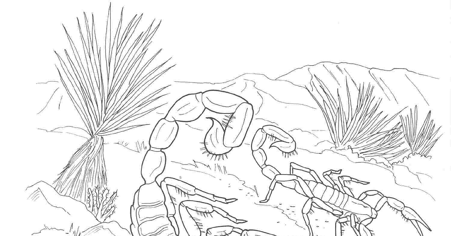 desert coloring pages - post desert coloring pages printable