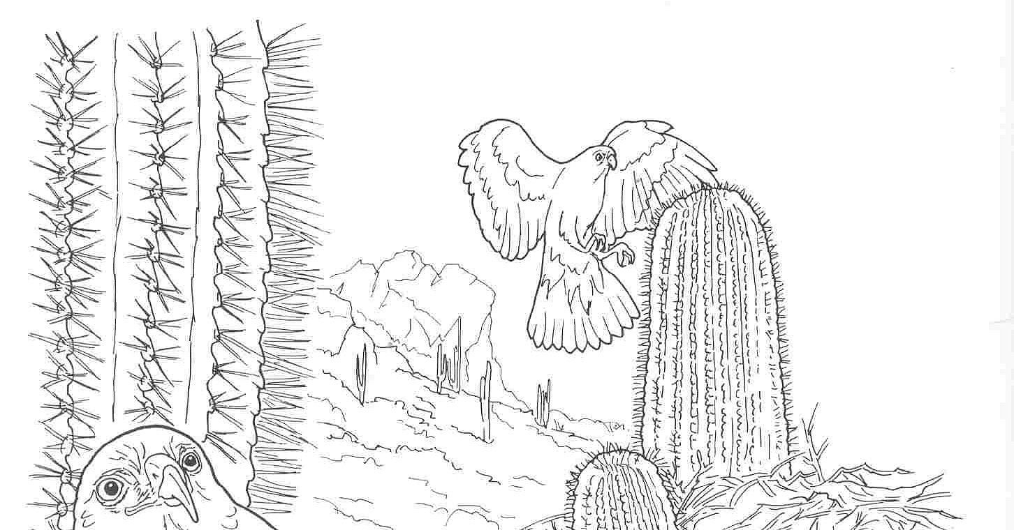 desert coloring pages - coloring pages for kids dessert