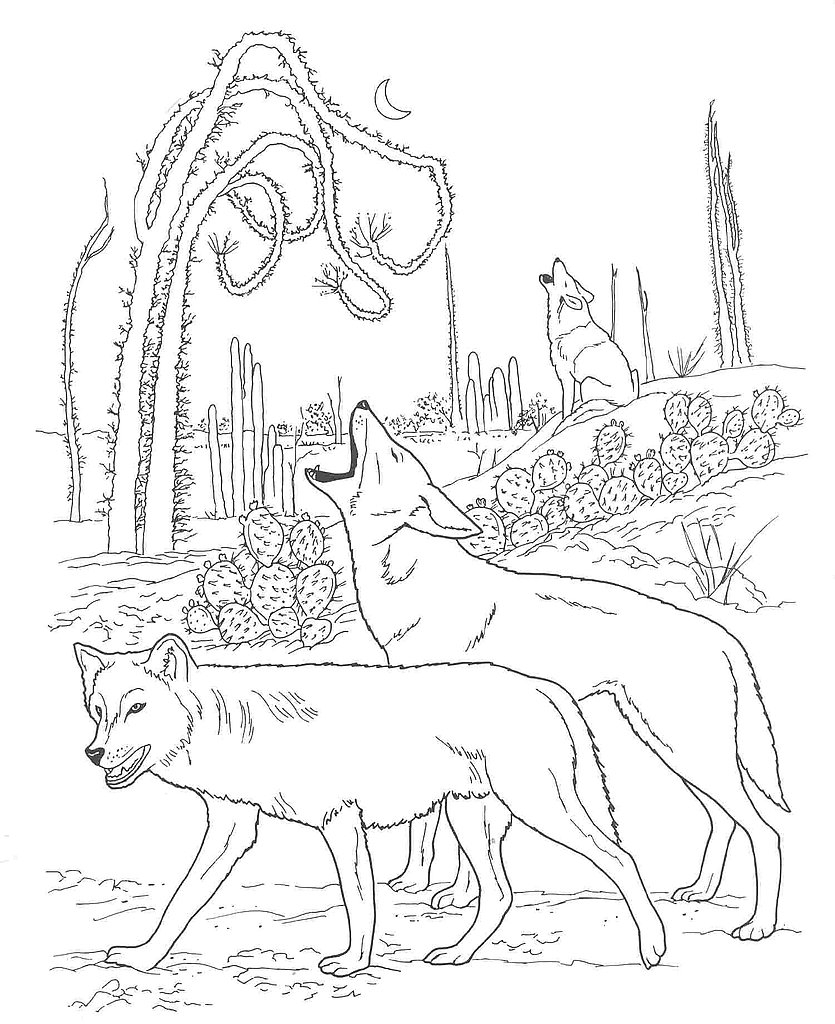 desert coloring pages - large desert scenery coloring pages sketch templates