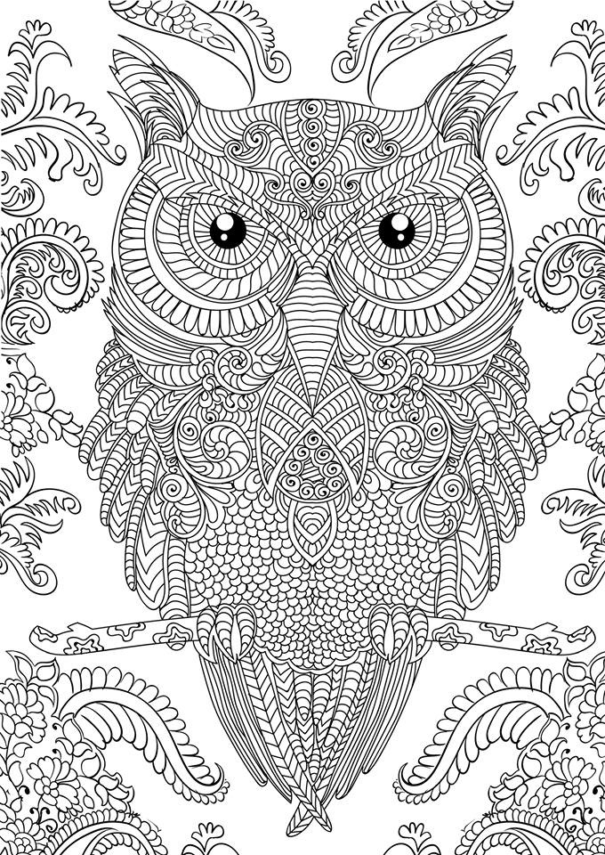 detailed coloring pages for adults - owl coloring pages adults