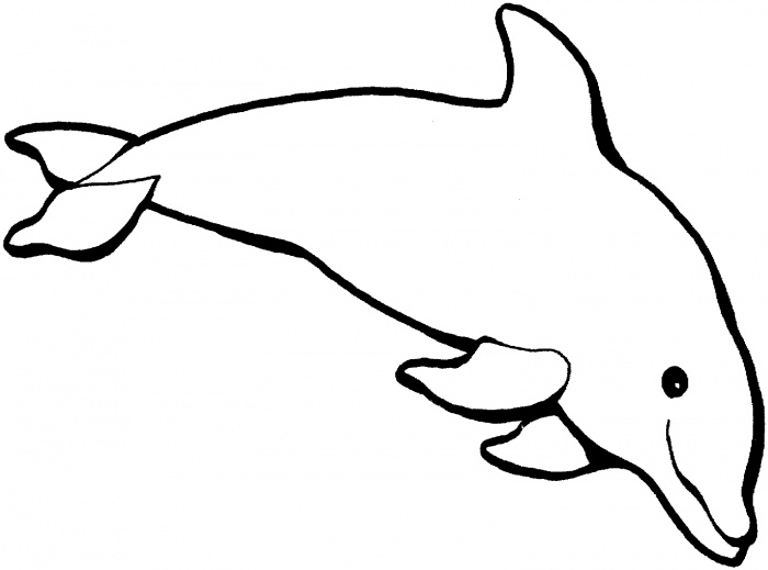 dolphin coloring pages - dolphin coloring page