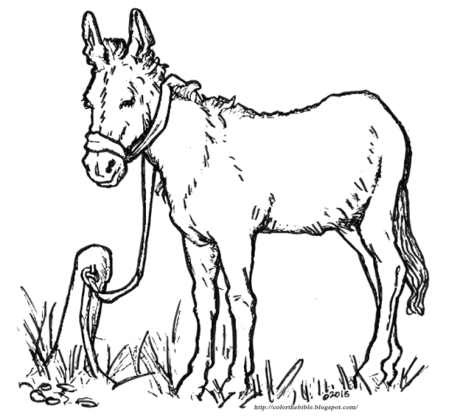 donkey coloring page - color this donkey for easter