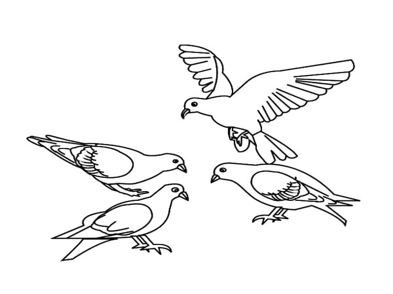 28 Dove Coloring Page Images | FREE COLORING PAGES - Part 3