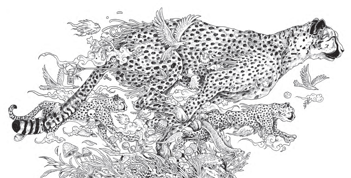 downloadable adult coloring pages - kerby rosanes animorphia free pattern