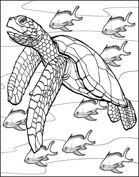 downloadable coloring pages - able coloring pages