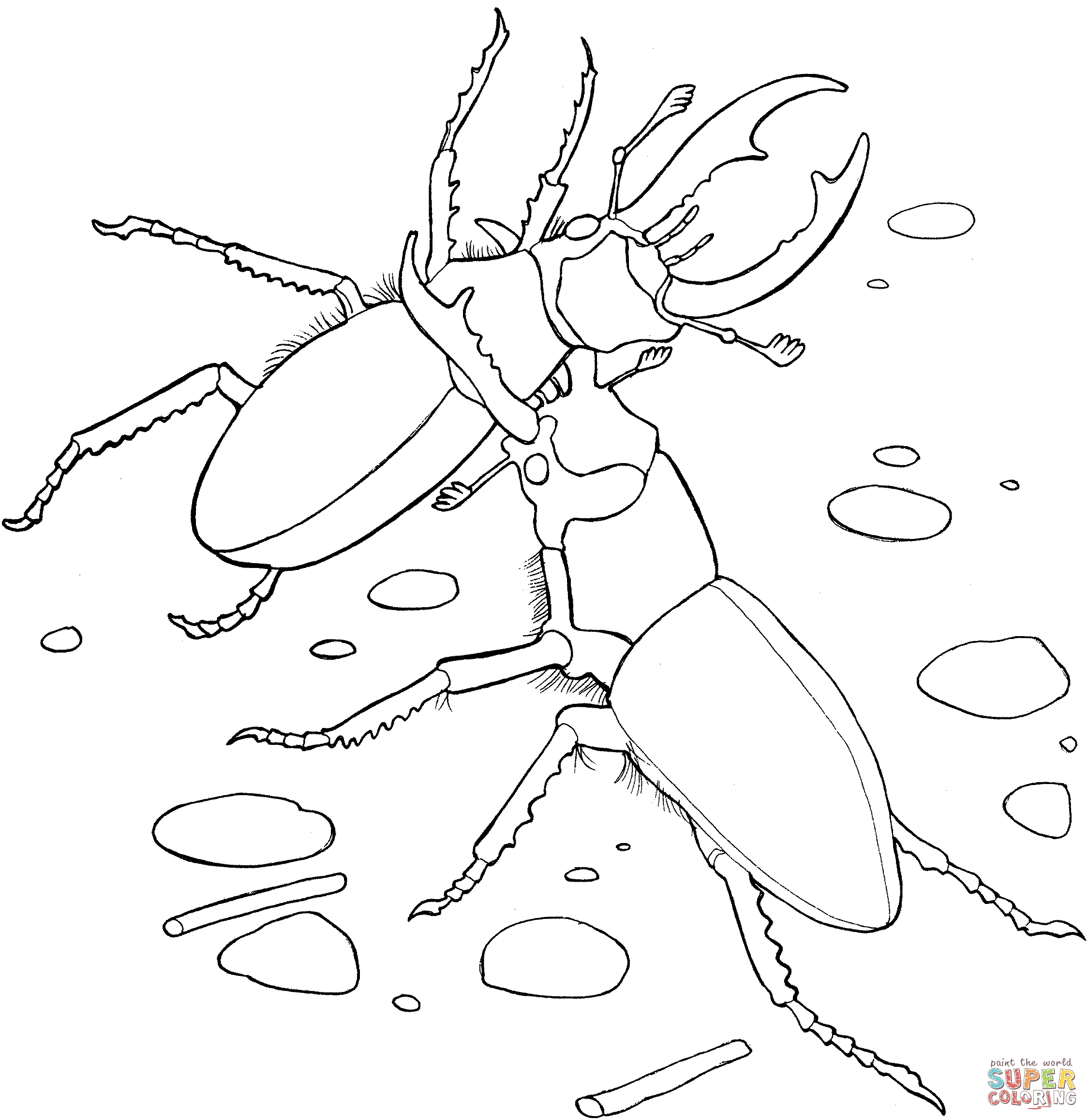 21 Dragonfly Coloring Page Compilation | FREE COLORING PAGES - Part 2