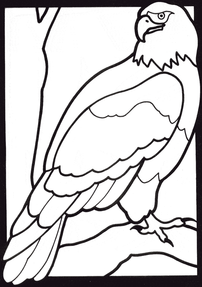 eagle coloring pages - eagle coloring 05