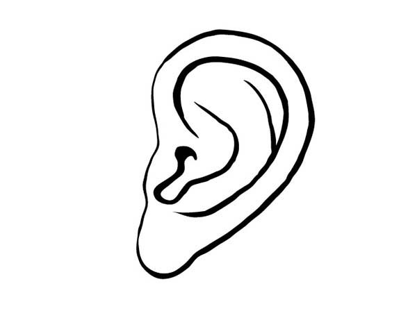 ear coloring page - ear pictures for kids