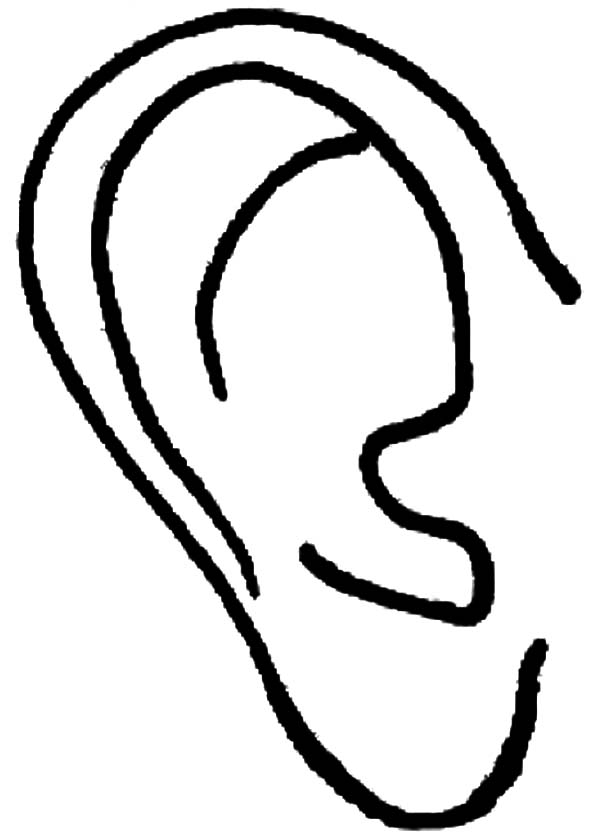 ear coloring page - ear