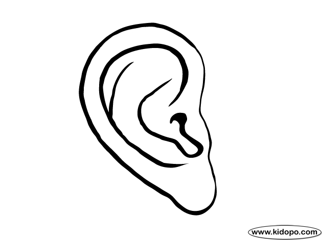 Ear Coloring Page - Right Ear Coloring Page