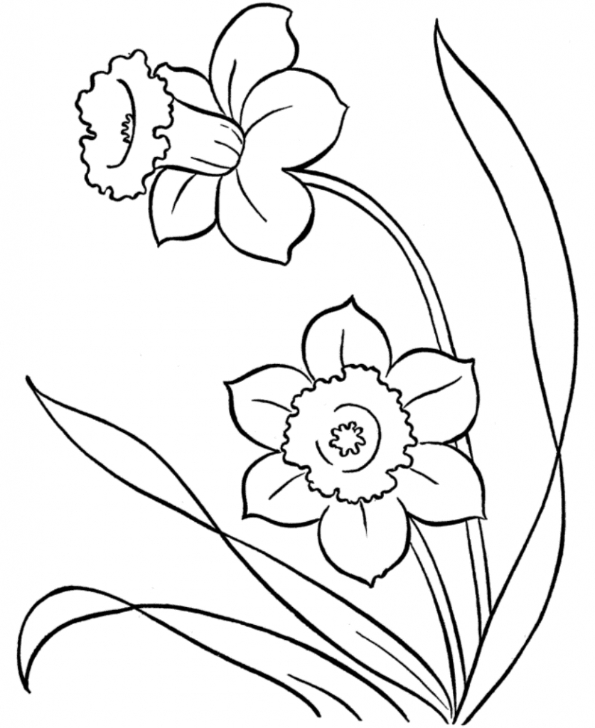 easy mandala coloring pages - flower drawings for coloring free printable flower coloring pages 16 pics how to draw in 1
