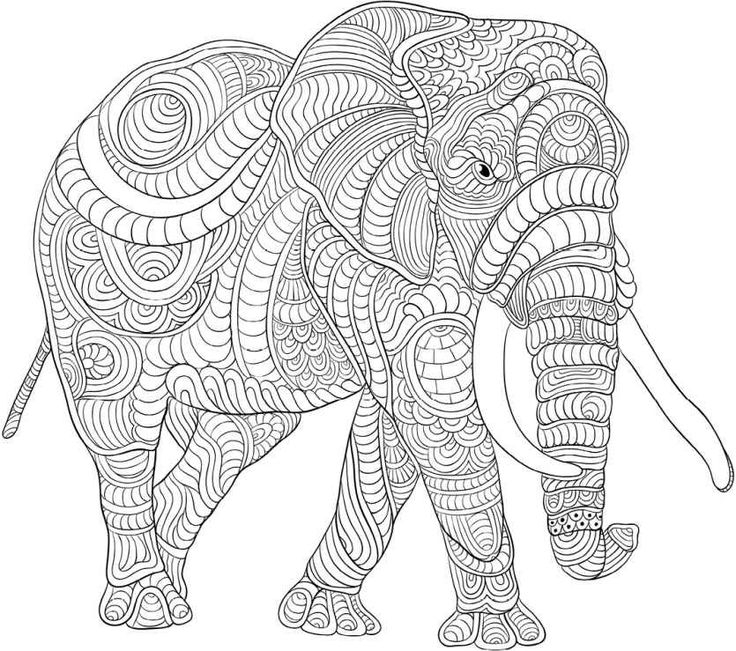 elephant and piggie coloring pages - coloring pages elephant face