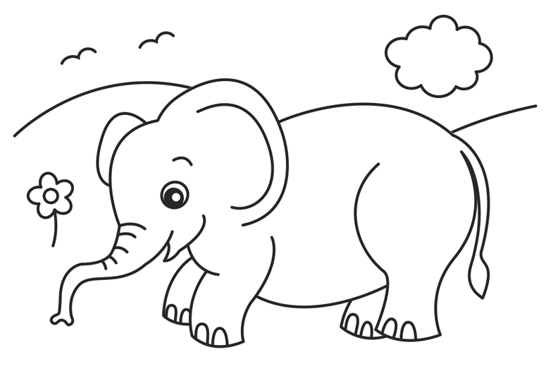 elephant coloring pages - baby elephant coloring pages animal