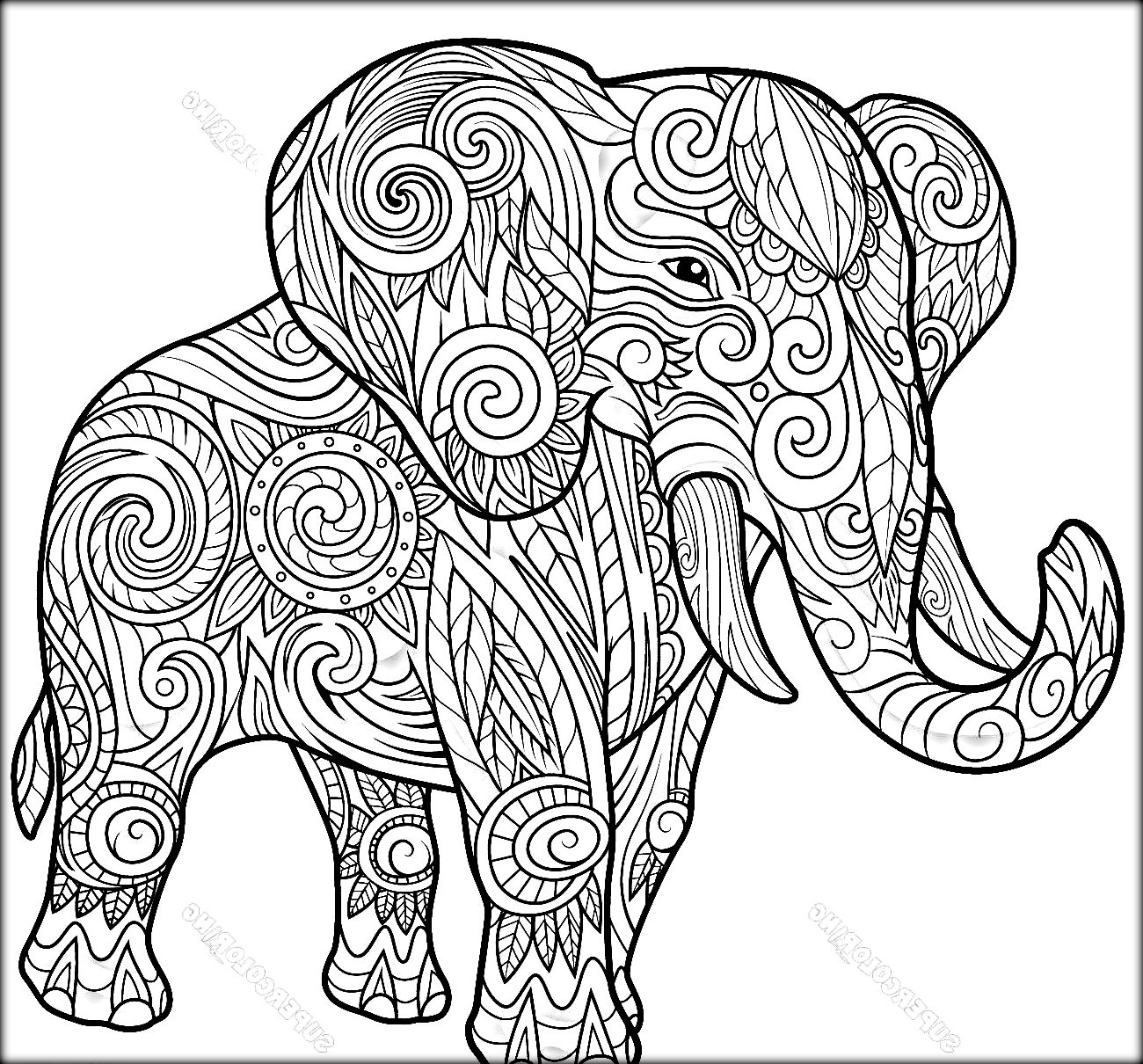 elephant coloring pages for adults - printable elephant coloring pages for adults