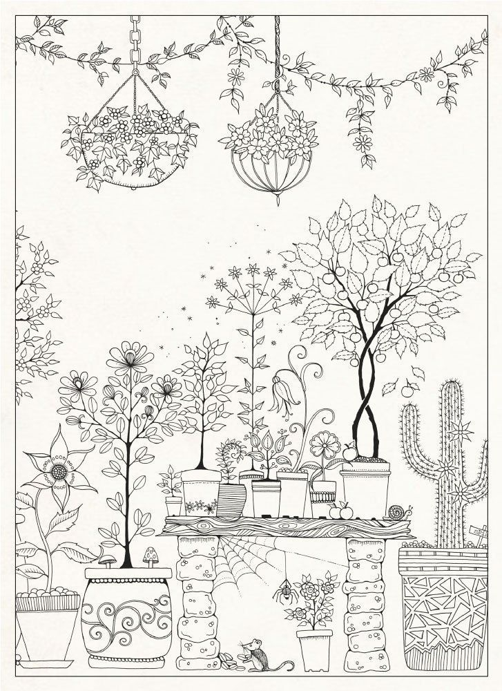 enchanted forest coloring pages - jardim secreto para colorir