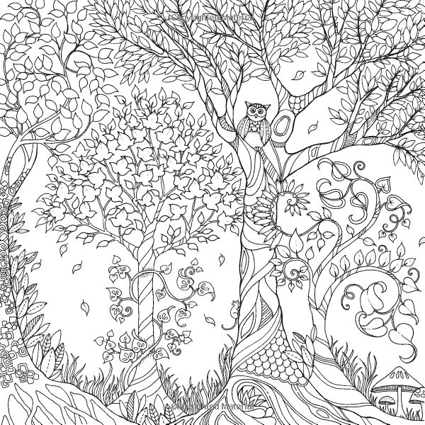 enchanted forest coloring pages - 31
