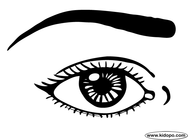 eye coloring page - eyes