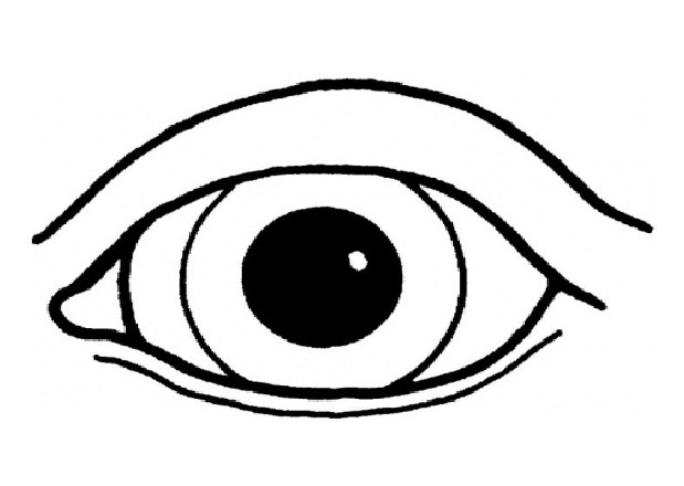 24 Eye Coloring Page Images