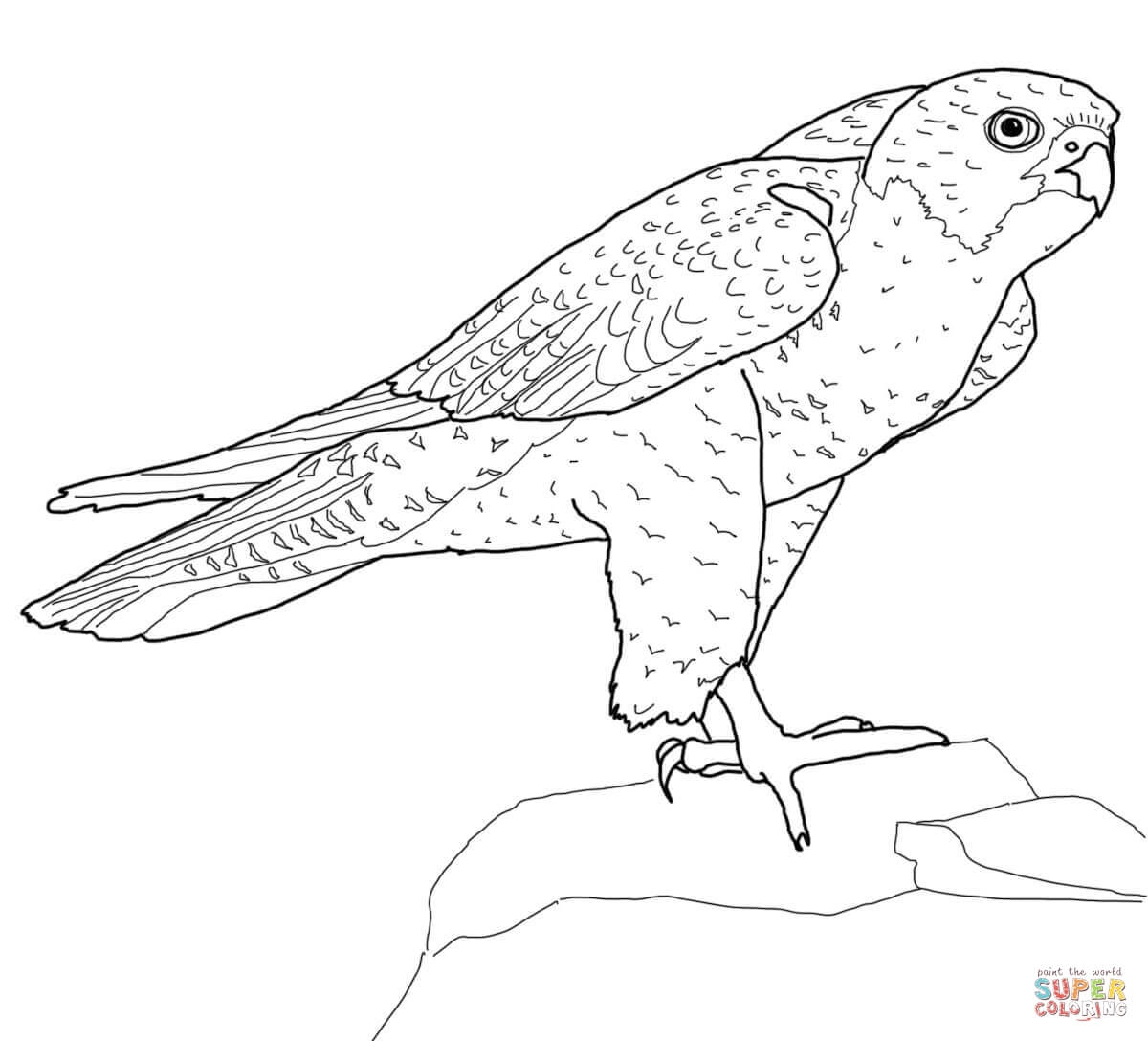 falcon coloring pages - f 16 falcon coloring sheets sketch templates