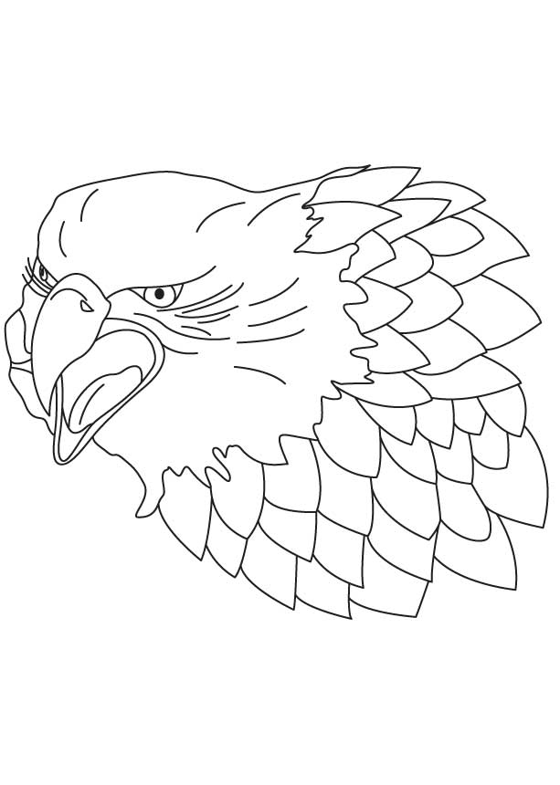 falcon coloring pages - 3