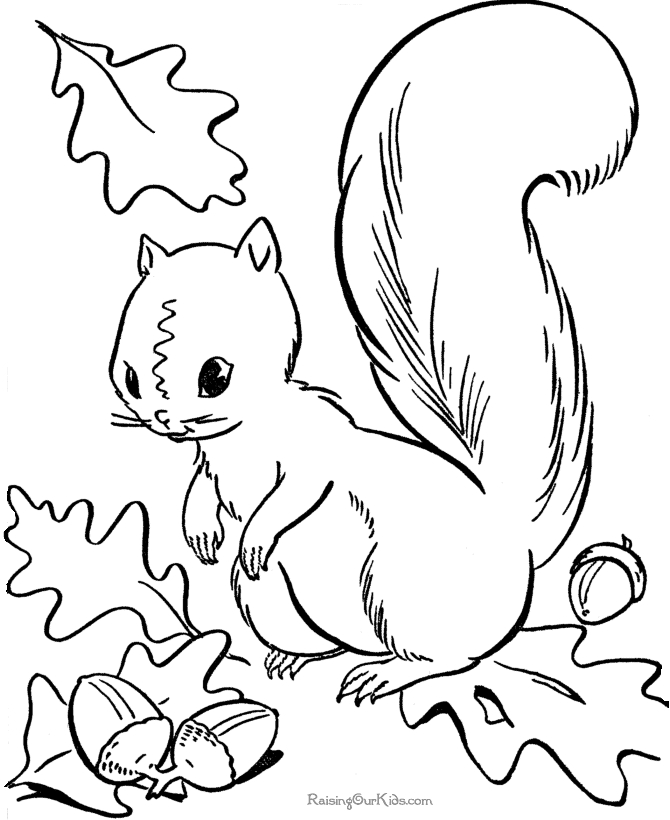 fall coloring pages - free fall coloring pages for kids