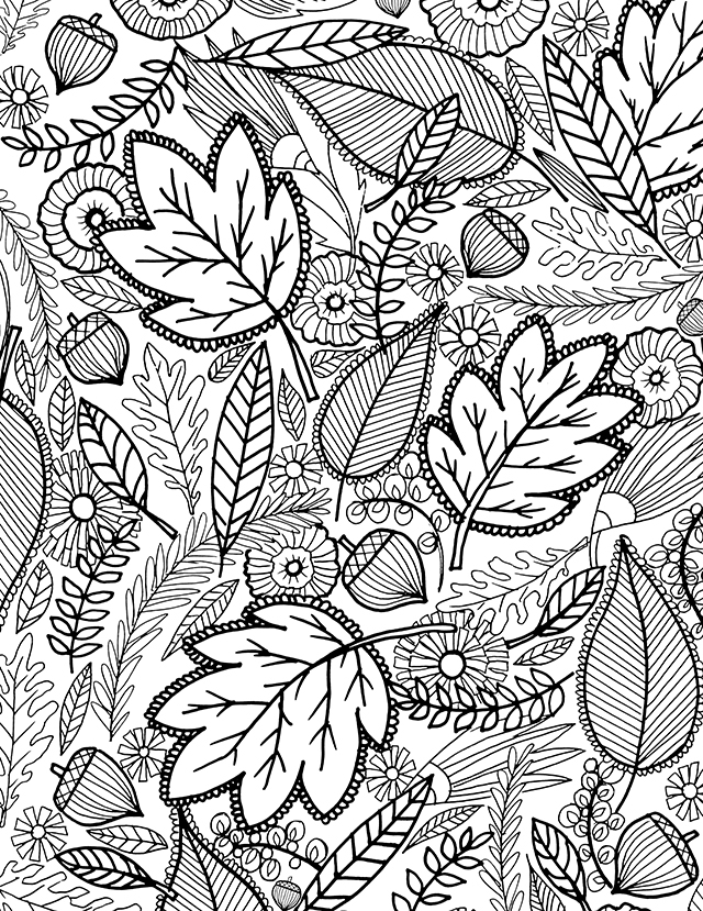 fall coloring pages for adults - a fall coloring page for you