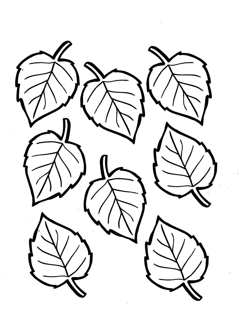 fall leaves coloring pages printable - fall leaves coloring pages