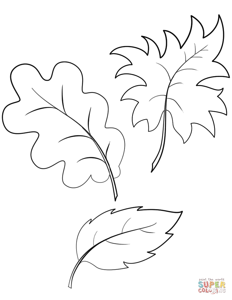 fall leaves coloring pages printable - fall autumn leaves