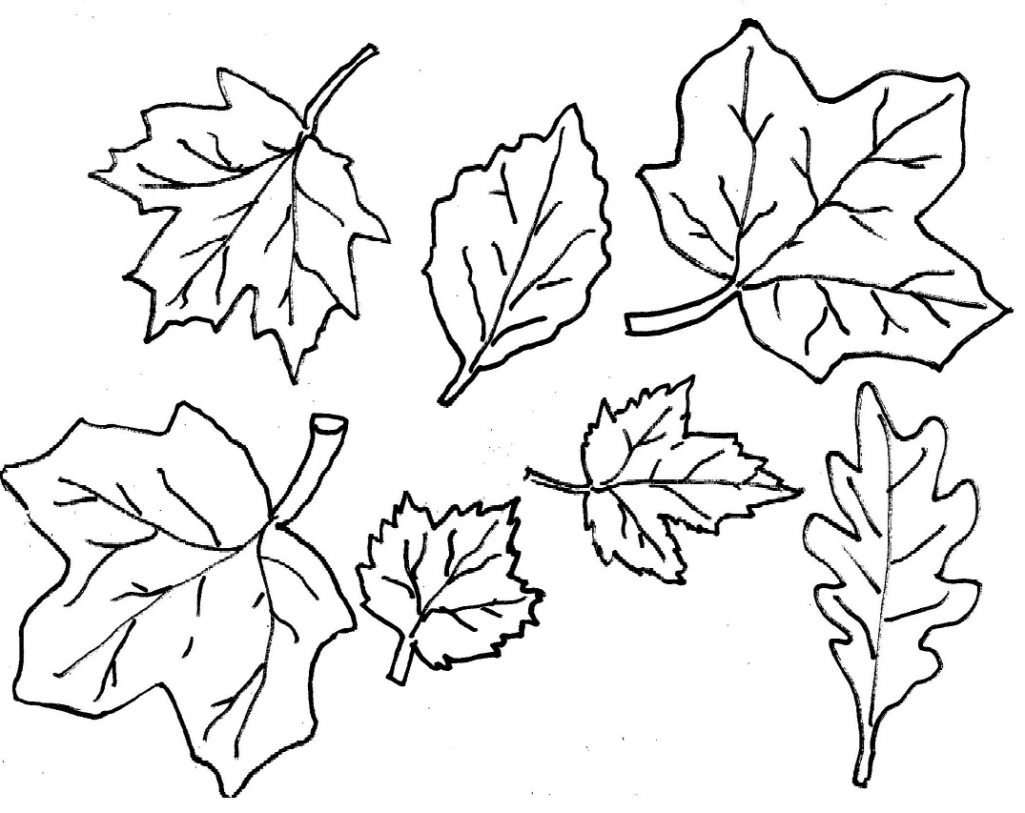 Fall Leaves Coloring Pages Printable - Fall Leaves Coloring Pages 2016