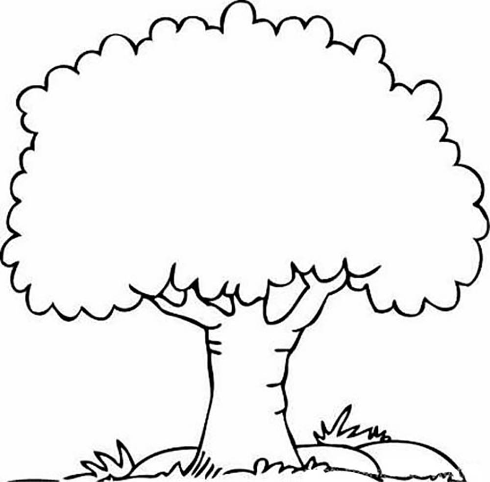 fall tree coloring pages - inspiring trees coloring pages 76